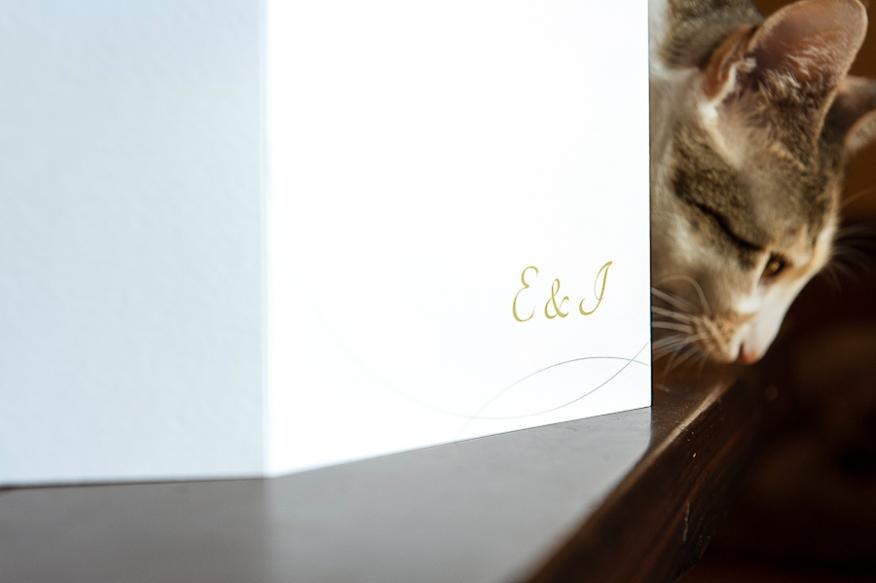 invitación boda sencilla novios gato artycam fotografía Santander León